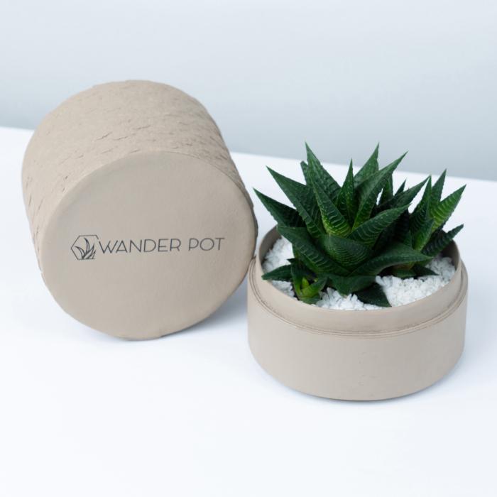 beige pot with plant