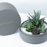 grey plant pot with lid