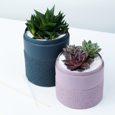 Him and Her succulent combo in charcoal blue and pink pots, cacti mix for anniversary gift. Biodegradable and recycled pot. Long-lasting and gorgeous sustainable plant gift.