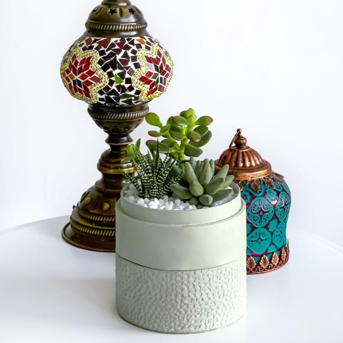 mint green ramadan succulent mix