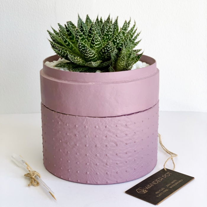 Midi Aloe Aristata in a dust pink handmade pot,aloe succulent. Biodegradable and recycled pot. Long-lasting and gorgeous sustainable plant gift.