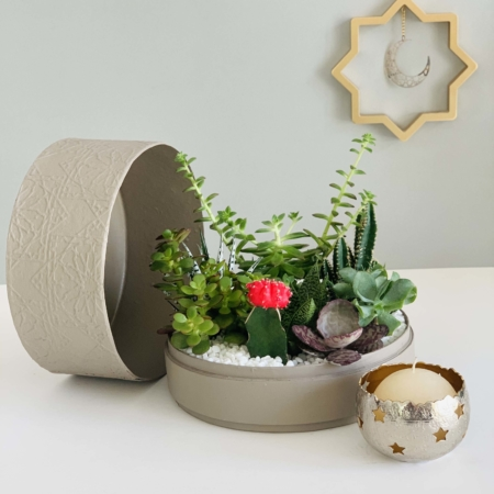 latte box with succulent garden ramadan