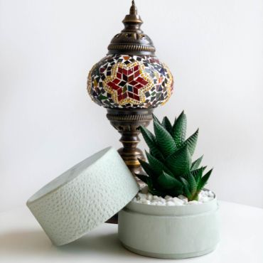 Mini Haworthia in a mint green handmade pot, mini aloe succulent with centrepiece in the background. Biodegradable and recycled pot. Long-lasting and gorgeous sustainable plant gift.