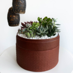 Lush Succulent mix in a red handmade pot, cacti mix with centrepiece lights. Biodegradable and Recycled Pot. Long-lasting and sustainable plant gift.
