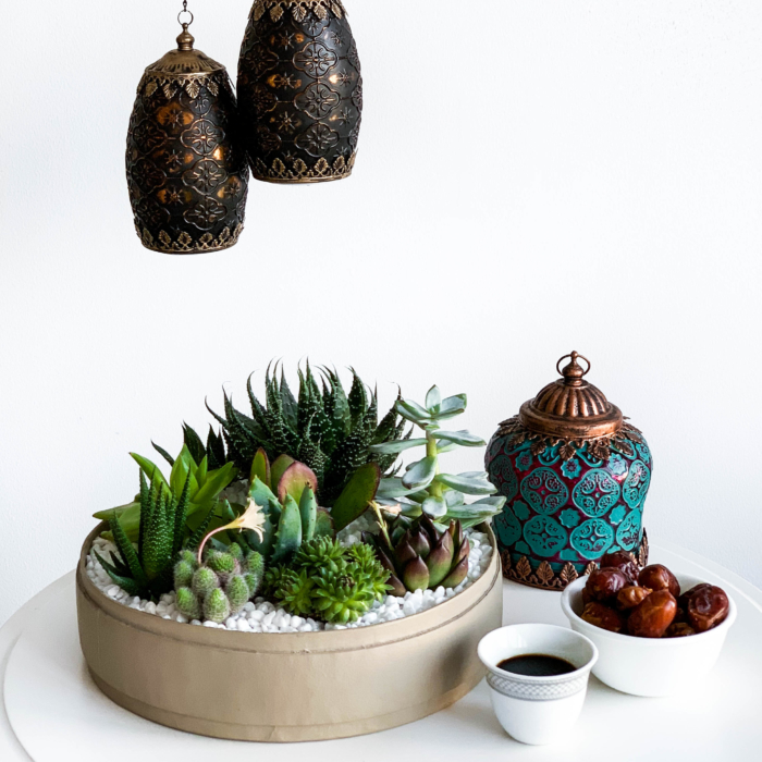Lush Succulent mix in a latte handmade pot, cacti mix with eid decor in background. Biodegradable and Recycled Pot. Long-lasting and sustainable plant gift.
