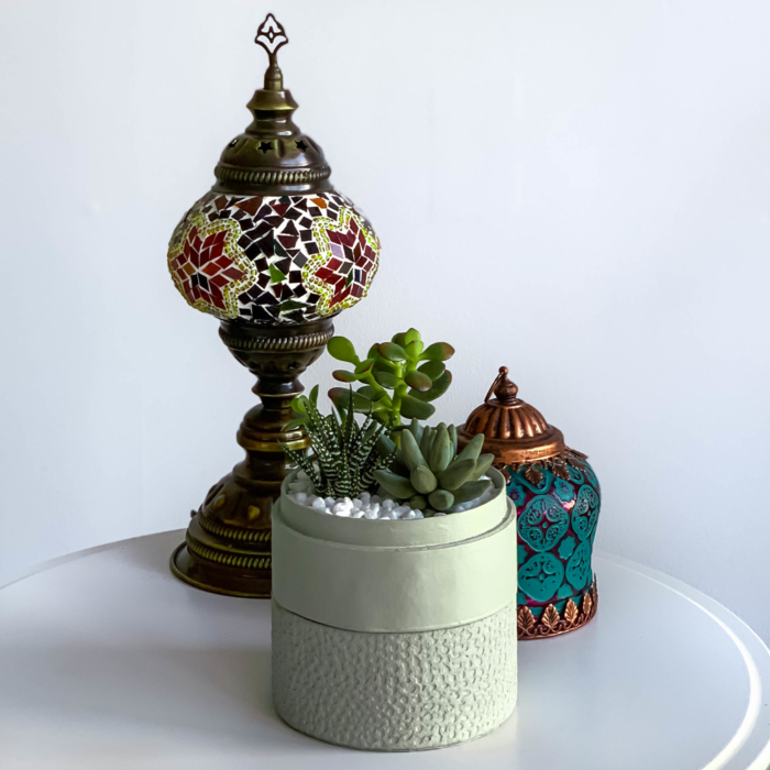 Mini Succulent mix in a mint green handmade pot, midi jungle cacti mix with centrepieces in background. Biodegradable and recycled pot. Long-lasting and sustainable plant gift.