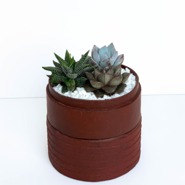 Mini succulent mix in a burgundy handmade pot. Biodegradable and recycled pot. Long-lasting and gorgeous sustainable plant gift.