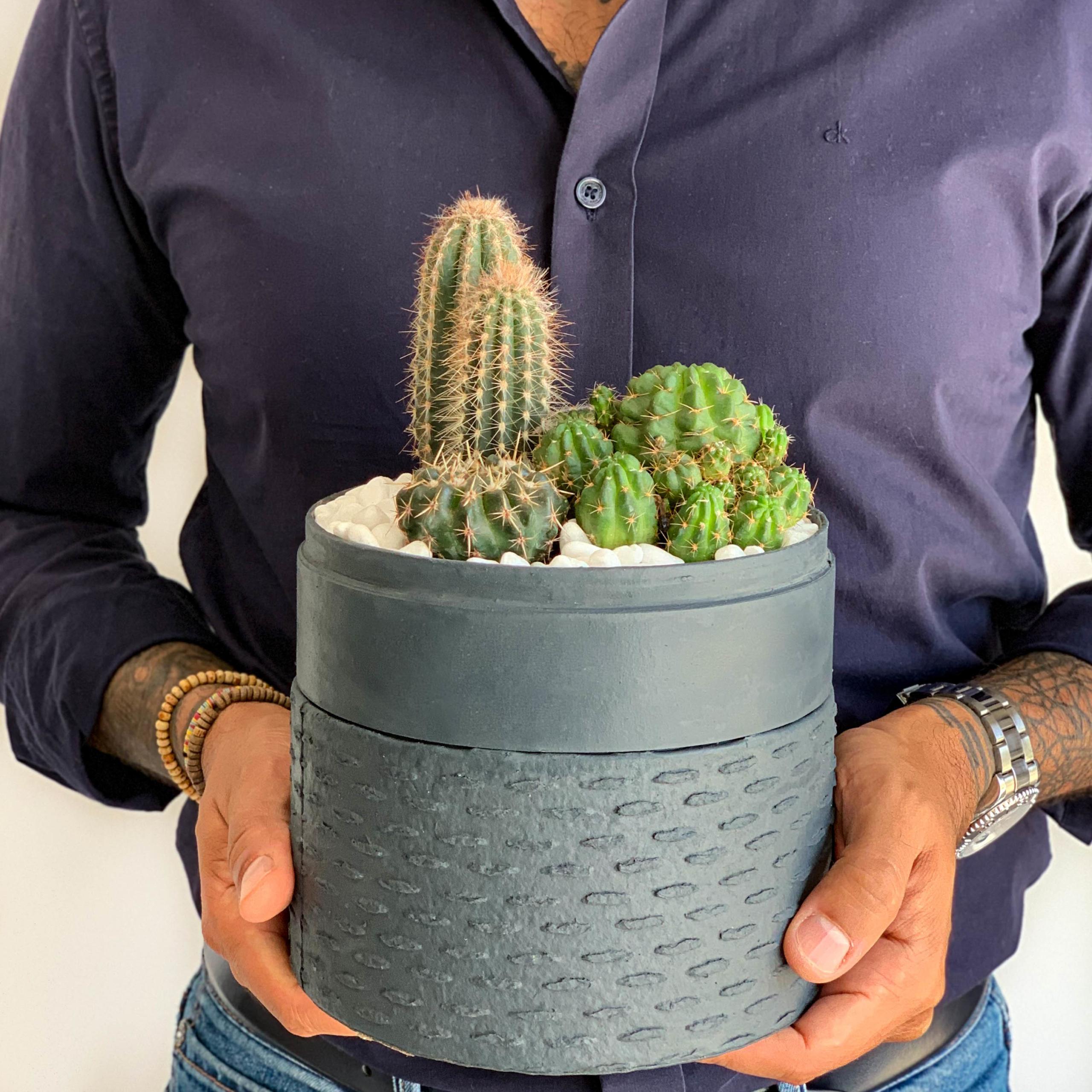 midi cacti deep jade