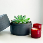 Landscape View of Mini Echeveria in a charcoal blue handmade pot, cute succulent with candles. Biodegradable and recycled pot. Long-lasting and memorable sustainable plant gift.