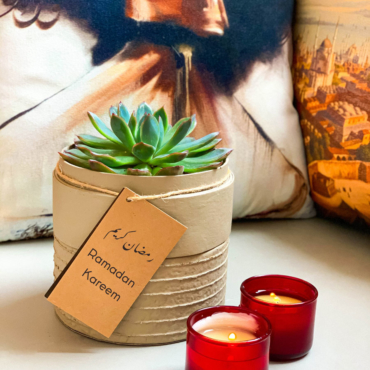 Landscape view of Mini Echeveria in a latte handmade pot, cute succulent with personalised gift card. Biodegradable and recycled pot. Long-lasting and sustainable plant gift.