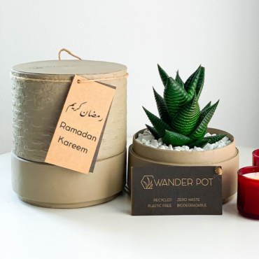 Mini Haworthia in a latte handmade pot, mini aloe succulent with personalised gift card. Biodegradable and recycled pot. Long-lasting and sustainable plant gift.
