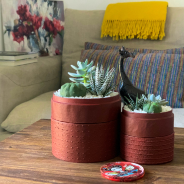 Succulent mix in two red handmade pots on centre table. Biodegradable and recycled pot. Long-lasting and sustainable plant gift.
